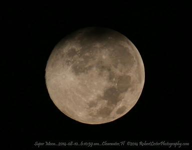 Super Moon...2014-08-10...6:10:59 am...Clearwater,Fl   ©2014 RobertLesterPhotography.com