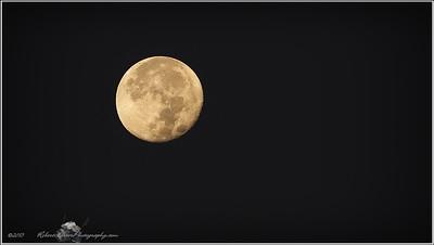 2015-11-27_PB271059_Moon,Clearwater,Fl_