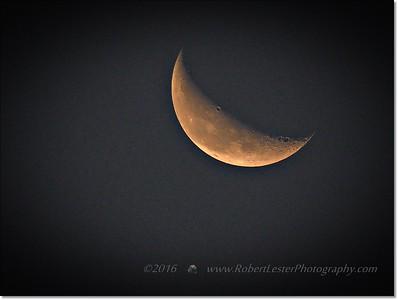Mr Moon hiding