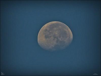 P9060001_moon