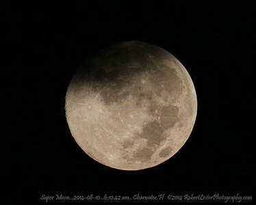 Super Moon...2014-08-10...6:10:42 am...Clearwater,Fl   ©2014 RobertLesterPhotography.com