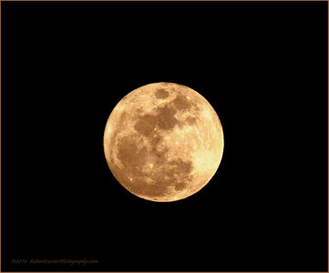 2016-01-23_P1235094_moon,Clearwater,fl