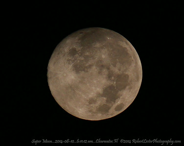 Super Moon...2014-08-10...6:11:12 am...Clearwater,Fl   ©2014 RobertLesterPhotography.com