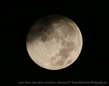 Super Moon...2014-08-10...6:10:28 am...Clearwater,Fl   ©2014 RobertLesterPhotography.com