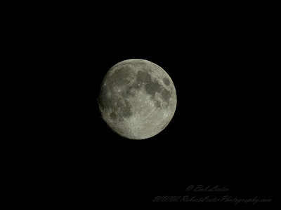 2019-04-18_m1300 1 6400,eb-4 0,f8,iso500, waxing gibbons moon__4180003