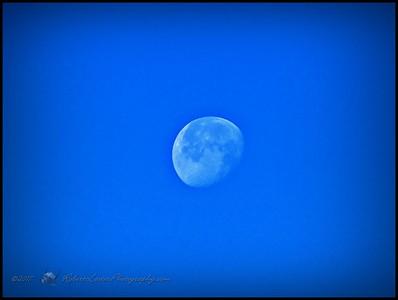 2017-03-16_P1330013_Moon,Clwtr,Fl