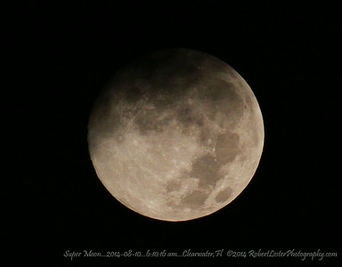 Super Moon...2014-08-10...6:10:16 am...Clearwater,Fl   ©2014 RobertLesterPhotography.com
