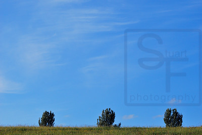 Sky and Land 601