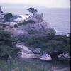 04/68 17 Mile Drive<br /> Lone Cypress