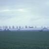 04/1981 Aalsmeer NL Greenhouses