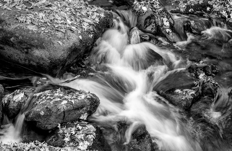 Rushing Stream