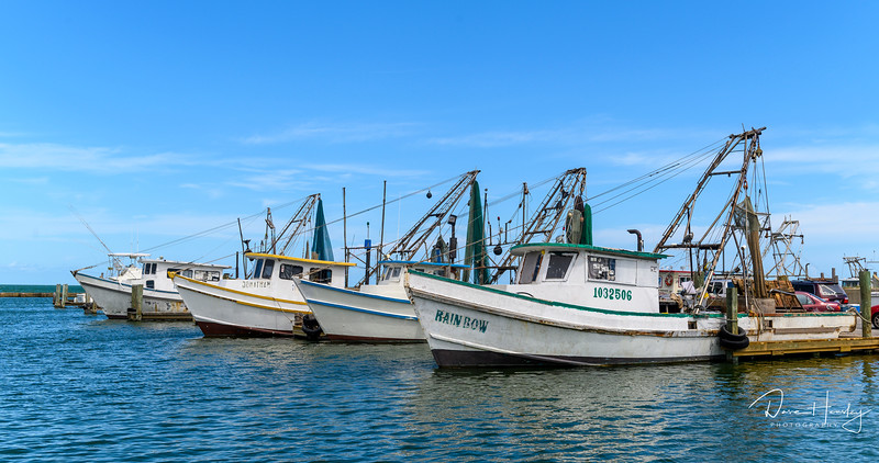 Shrimp boats in Cove Harbor