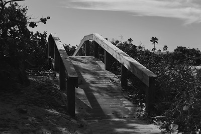 A Path to Brighter Days,  Fort Myers Beach FL