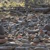 Buddha Rock Cairns on Buddha Beach (Buddha Garden) on Oak Creek near Red Rock Crossing.