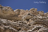 Montezuma Castle Surrounding Walls. One of the gems of Arizona.