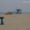 Venice Beach, Califormia Photo # 263 Deborah Carney, Photographer