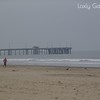 Venice Beach, Califormia Photo # 264 Deborah Carney, Photographer