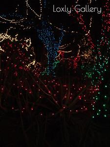 Christmas Las Vegas Style