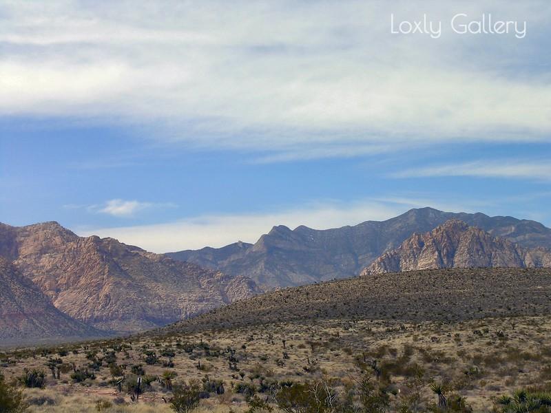 Red Rock Canyon, Las Vegas, Nevada. Photographs by Deborah Carney. Image #DSCN4415