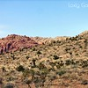Red Rock Canyon, Las Vegas, Nevada. Photographs by Deborah Carney. Image #DSCN4355