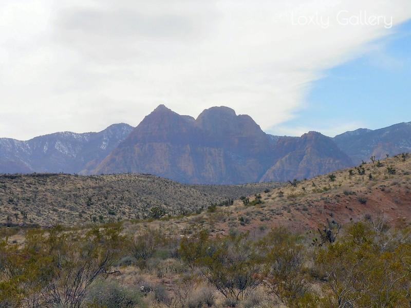 Red Rock Canyon, Las Vegas, Nevada. Photographs by Deborah Carney. Image #DSCN4357