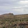Red Rock Canyon, Las Vegas, Nevada. Photographs by Deborah Carney. Image #DSCN4387