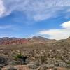 Red Rock Canyon, Las Vegas, Nevada. Photographs by Deborah Carney. Image #DSCN4308