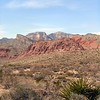 Red Rock Canyon, Las Vegas, Nevada. Photographs by Deborah Carney. Image #DSCN4322