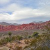 Red Rock Canyon, Las Vegas, Nevada. Photographs by Deborah Carney. Image #DSCN4409