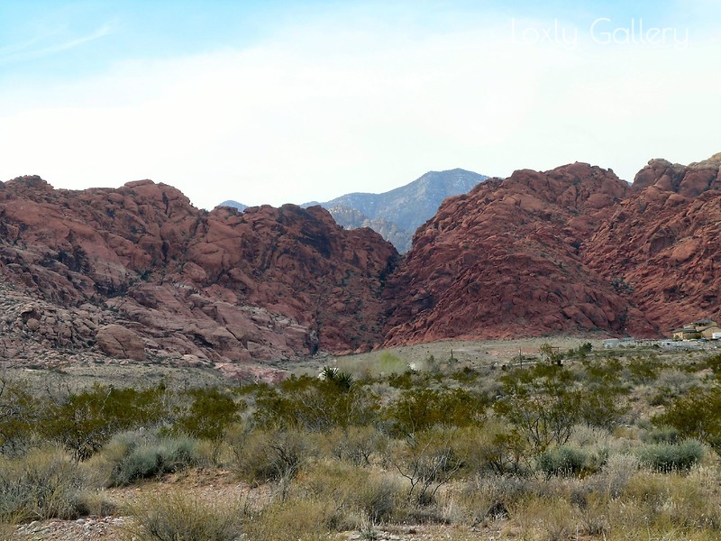 Red Rock Canyon, Las Vegas, Nevada. Photographs by Deborah Carney. Image #DSCN4368