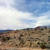 Red Rock Canyon, Las Vegas, Nevada. Photographs by Deborah Carney. Image #DSCN4398