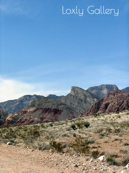 Red Rock Canyon, Las Vegas, Nevada. Photographs by Deborah Carney. Image #DSCN4373
