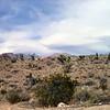 Red Rock Canyon, Las Vegas, Nevada. Photographs by Deborah Carney. Image #DSCN4399