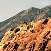 05-14-06-redrock-DSC06676