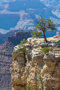 Grand Canyon-5151