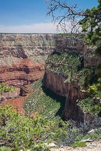 Grand Canyon-5385
