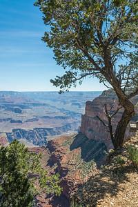 Grand Canyon-5353