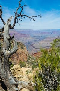 Grand Canyon-5346