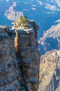 Grand Canyon-5223