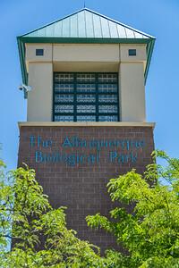 Albuquerque-6352