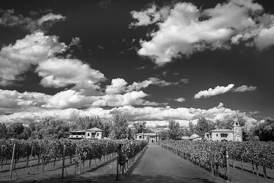 ABQ Casa Rodena Winery
