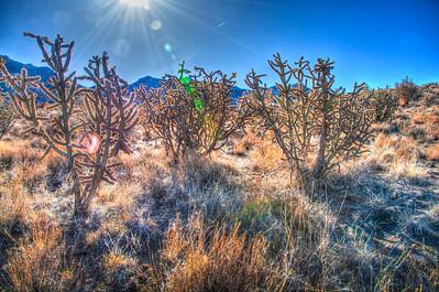 Embudo Canyon-0362_1_0_HDR