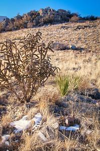 Embudo Canyon-0322_tonemapped_HDR