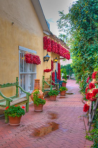 Old Town--Albuquerque, New Mexico