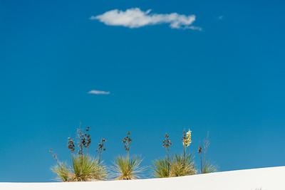 White Sands-6441
