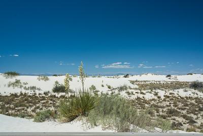 White Sands-6437