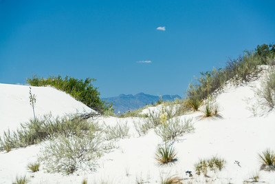 White Sands-6443