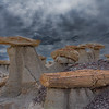 Petrified Wood & Hoodoos