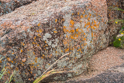 Enchanted Rock-2793