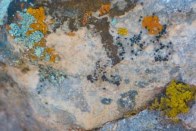 Porcupine Rim_Castle Valley Overlook-4102